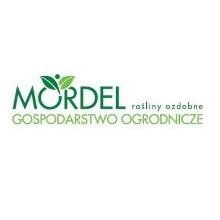 logo_mordel