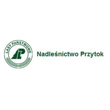 logo_lasyprzytok